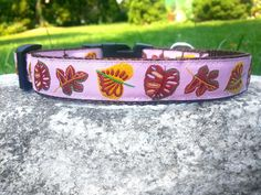 Pretty Fall Leaves 3/4 Inch Width Dog Collar by WillyWoofs on Etsy, $16.00
