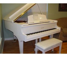White baby grand piano please? I'll let anyone get me one.