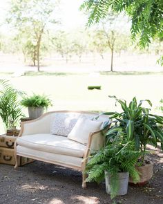 Our Ella Loveseat was one of our first Lounge pieces added to our {VINTAGE RENTAL} collection & is still a favorite  it's perfect for bridal shots your sweetheart table a petite lounge or an a la cartel add on you your Luxe Lounge as it was here at Patrick Ranch  love how everything turned out because of the awesome team I was lucky enough to work with!!  Venue | Patrick Ranch Museum Planner | @cesweddingsandevents Floral | @cambray1  Caterer | Special Times Catering Paper…