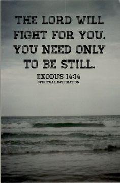 鈥淭he #LORD will fight for you; you need only to be still鈥?(Exodus 14:14, NIV) When was the last time you can remember being still? And I don鈥檛 mean sitting in traffic or...