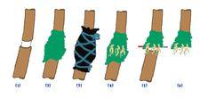 Existem vário métodos eficazes de alporquia, o meu favorito é este: ALPORQUIA DE ANEL A alporquia é um método de reprodução assexuada de plantas, provocando o aparecimento de raízes adventícias (ra...