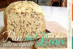 pan rapido con semillas de lino en horno de pan