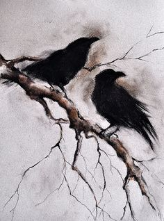 Original Charcoal Crow Drawing Ravens on a Branch by AbstractArtM