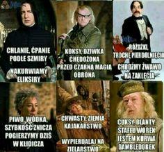 Rowling Harry Potter, Harry Potter Film, Harry Potter Fan Art, Harry Potter Universal, Harry Potter Memes, Polish Memes, Weekend Humor, Funny Mems, Wtf Funny