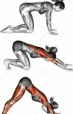 Work your muscles to look sleek and fit!