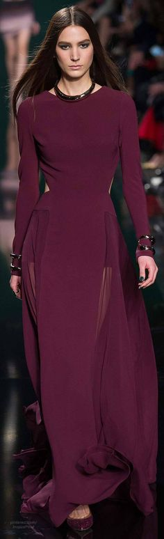 Fall 2014 Ready-to-Wear Elie Saab   The House of Beccaria#
