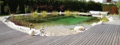 Schwimmteich mit Holzumrandung