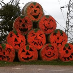 How cool are these guys? Saw them guarding the entrance at Willows Farm #halloween #spooky