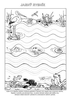 Pond Life, Preschool Classroom, Forest Animals, Habitats, Green Day, Worksheets, Art For Kids, Diy And Crafts, Tapestry