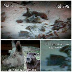 """Gefällt 15 Mal, 1 Kommentare - Mars Anomalien (@lilithonmars) auf Instagram: """"#mars #marsanomalien #space #unglaublich #ancient #ufo #artefacts #alien #sol 796 #beauty…"""""""