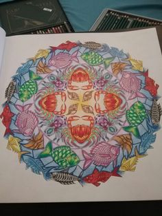 Completed From Johanna Basford Enchanted Forest Colouring Book Used