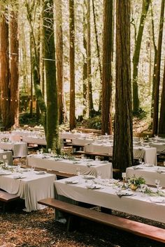 This forest wedding looks like such a dream! This forest wedding looks like a dream! Wedding Looks, Perfect Wedding, Fall Wedding, Our Wedding, Dream Wedding, Elegant Wedding, Wedding Picnic, Wedding Unique, Wedding Dinner