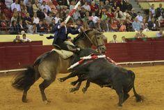 Pablo Hermoso de Mendoza Mendoza, Badass, Horses, The Originals, Animals, Pictures, Animales, Animaux, Horse