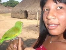 Índios do Brasil Native American Women, American Spirit, South America, Brazil, People, Photography, Animals, Country, Ancestry