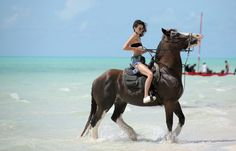 """""""August 12, 2016 - Riding horses in Turks and Caicos. """""""