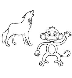 Monkey And Wolves