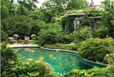 enchanted swimming pool. this must be beautiful in the evenings with only the pool lights on