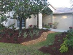 Ideas for a Florida landscape
