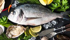 Im Februar verwöhnt das Team des Braurestaurants IMLAUER Salzburg seine Gäste mit Muschel- und Fischspezialitäten aus Flüssen, Seen und Meeren. Seen, Salzburg, Restaurants, Hotels, Brewing, February, Sea Shells, Fish, Diners