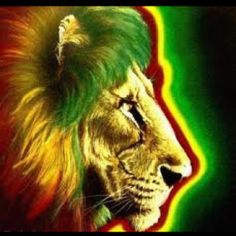 """Another major practice of the rastafari culture are the wearing of the colors red, green, and gold. According to religionsfacts.com, """"Red stands for the triumphant church of the Rastas as well as the blood of the martyrs in the black struggle for liberation. Gold represents the wealth of their African homeland and green symbolizes Ethiopia's beauty and lush vegetation."""" The Lion of Judah also symbolizes the Imperial Ethiopian flag, used in Haile Selassie I's Ethiopia."""