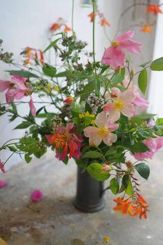 Flowers + Rainstorms | Frolic