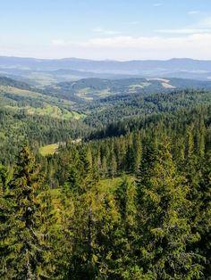 Z Bachledky-krása slovenskej prírody Vineyard, Mountains, Nature, Travel, Outdoor, Outdoors, Naturaleza, Viajes, Vine Yard