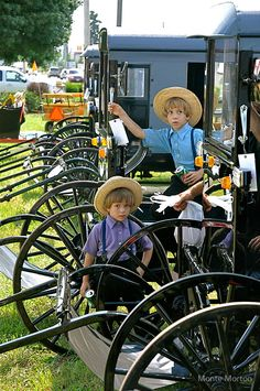 """""""The Amish Buggy"""" by Monte Morton Pennsylvania Dutch Country, Amish Country, Amish Town, Church Fellowship, Amish Family, Amish Culture, Amish Community, Horse And Buggy, Ontario"""