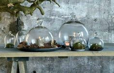 For fall Glass Bell Jar, The Bell Jar, Cloche Decor, Christmas Decorations, Table Decorations, Glass Containers, Cold Porcelain, Container Gardening, Terrarium