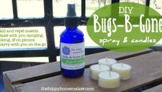 Ban the Bugs With Essential Oils - DIY Bugs-B-Gone Candles & Spray modified see book