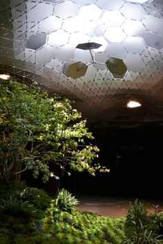 5 | The Lowline, New York's Revolutionary Underground Park, Says Let There Be Light | Co.Exist: World changing ideas and innovation