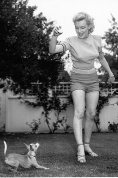 Marilyn Monroe and her Chihuahua Josefa in a photo taken in 1950