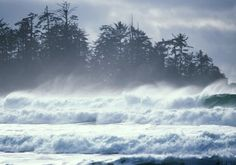 Storm-watching on the Island Tofino, Vancouver Island Vancouver City, Vancouver British Columbia, Vancouver Island, Best Places To Travel, The Places Youll Go, Places To Visit, West Coast Canada, Water Pictures, Pacific Northwest