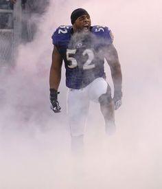 Baltimore Ravens Ray Lewis' final home game