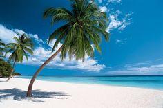 Sous le soleil de République dominicaine