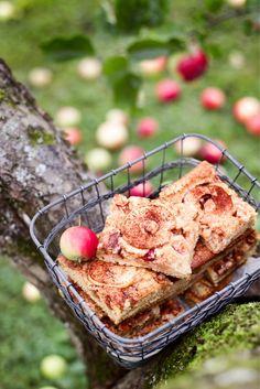 Helppo omenapiirakka syntyy piimätaikinaan kädenkäänteessä
