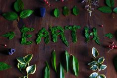 Featuring easy ways to be more environmentally friendly! If you want simple tips to improve your impact on the planet, visit Green Living for Lazy People. Types Of Red Wine, Eco Friendly Environment, Sustainable Environment, Living English, Save Our Earth, Lazy People, Earth Day, Mother Earth, Free Images