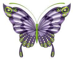 ‿✿⁀°•.Butterflies°•.‿✿⁀ Butterfly Clip Art, Butterfly Drawing, Butterfly Pictures, Butterfly Fairy, Butterfly Painting, Butterfly Crafts, Butterfly Kisses, Butterfly Pattern, Butterfly Flowers