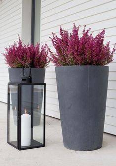 Gardening Autumn - puutarha Archives - Modernisti kodikas - Autumn decoration with heathers and candles With the arrival of rains and falling temperatures autumn is a perfect opportunity to make new plantations