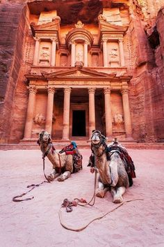 Travel Dream #24 may soon come true!  Marvel at the timeless architecture of the Nabateans! Petra, Jordan