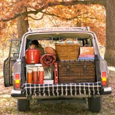 autumn tailgate party - hot apple cider, pumpkin muffins and a warm plaid blanket