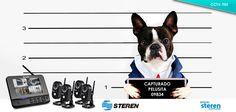 «¡Captura a los bandidos!»: Grabador de video inalámbrico con monitoreo a través de Internet