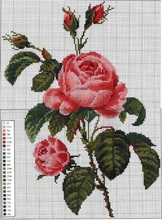 Cross Stitch Rose, Cross Stitch Borders, Cross Stitch Flowers, Cross Stitch Charts, Cross Stitching, Cross Stitch Embroidery, Hand Embroidery, Cross Stitch Patterns, Fabric Painting