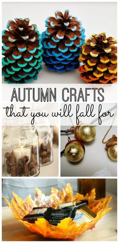 10 simple Autumn crafts that you will fall for.  http://www.jexshop.com/