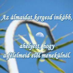 Az álmaidat kergesd inkább, ahelyett, hogy a félelmeid elől menekülnél. # www.facebook.com/angyalimenedek