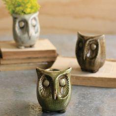 Adorable owl vases