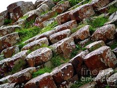 Another View of the Giant's Causeway - © Patricia Griffin Brett on Fine Art America ~ prints starting @ $27