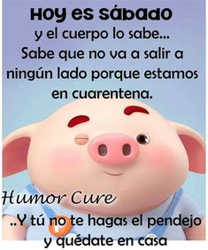 Pig Illustration, Illustrations, Pig Drawing, Cute Pigs, Spanish Quotes, Hilarious, Funny, Nostalgia, Memes