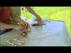 How to Butcher a Chicken Part 2 - HobbyFarms.com