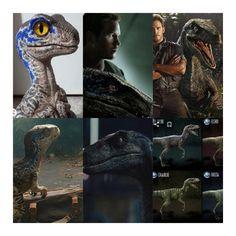 New Jurassic World, Blue, Animals, Animales, Animaux, Animal, Animais