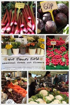 Homegrown and gorgeous fruit, vegetables and flowers at Sherborne's Dorset Farmers' Market